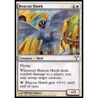 Beacon Hawk