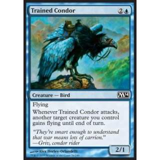 Trained Condor