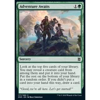 Adventure Awaits - FOIL