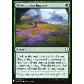 Adventurous Impulse