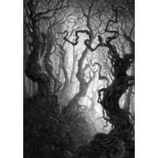 Art Series: Forest (V.1) - PROMO