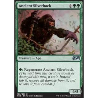 Ancient Silverback