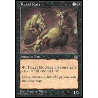 Rabid Rats