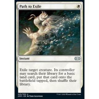 Path to Exile - FOIL