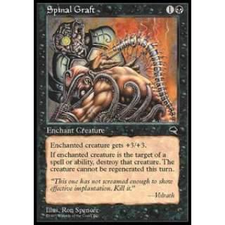 Spinal Graft